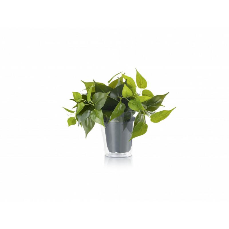 Trio PLANT 92945 hangulatfény -